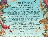 Slap! Festival 2014
